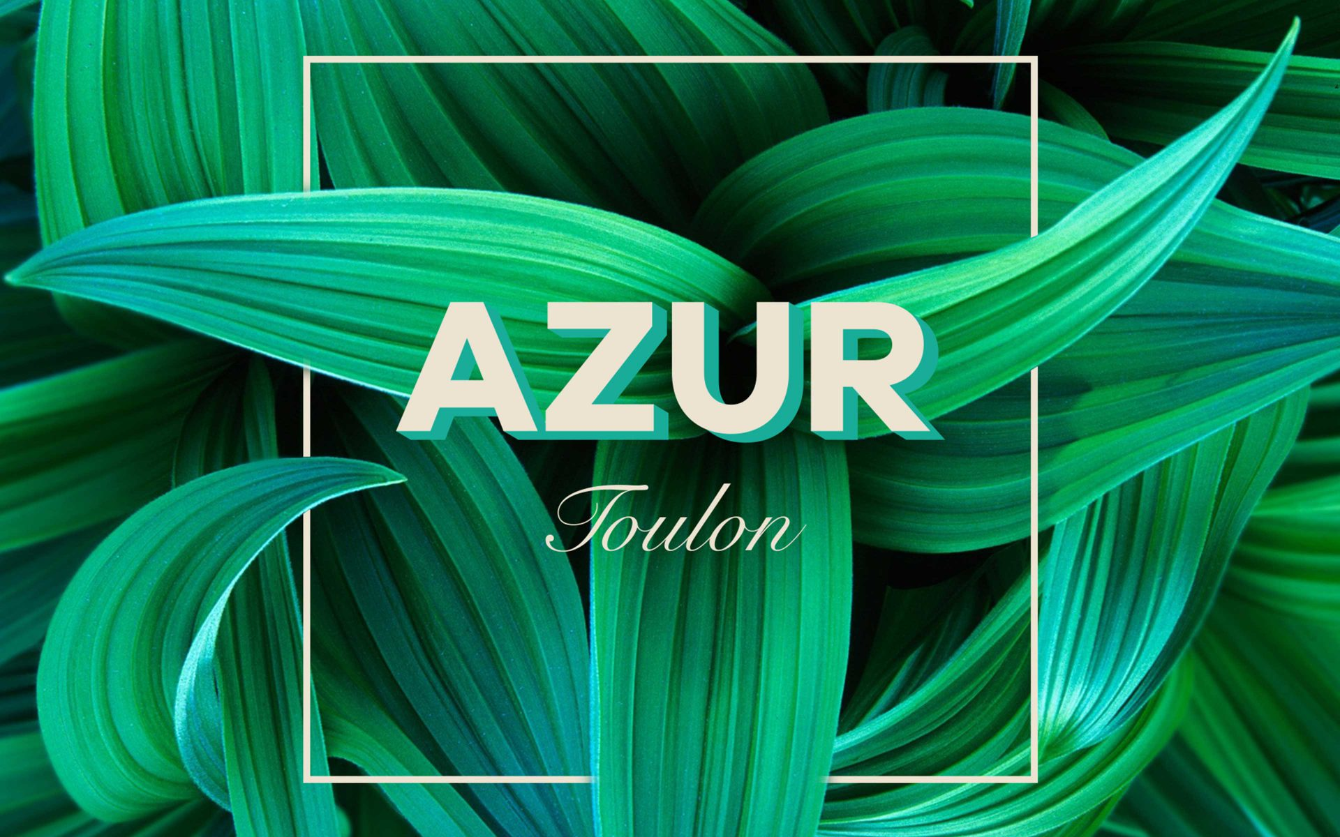 AZUR Toulon, luxurious brand logo and leafy design by DIFFER