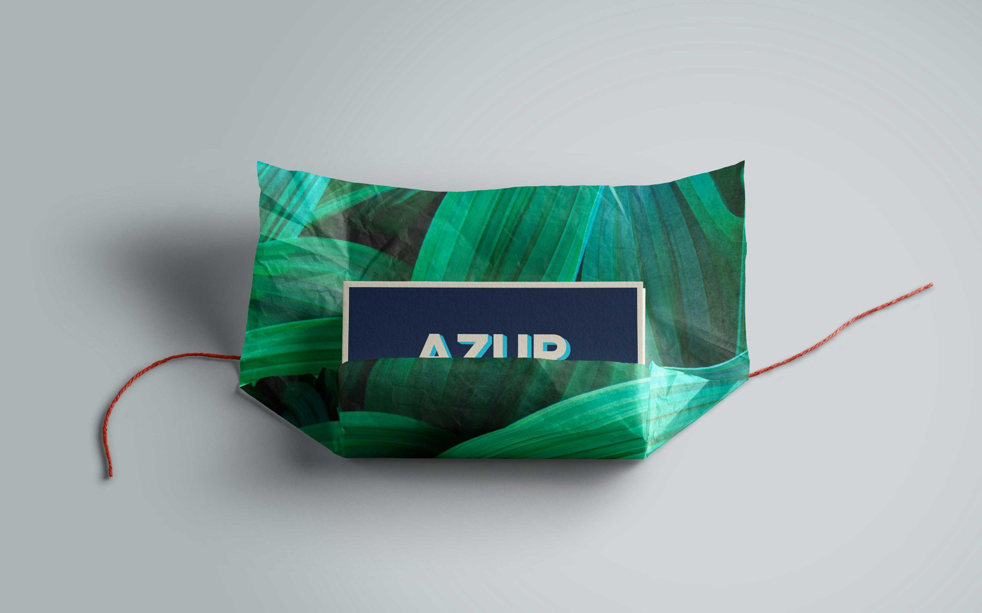 AZUR Toulon property development luxurious green and blue business cards brand logo and creative by DIFFER